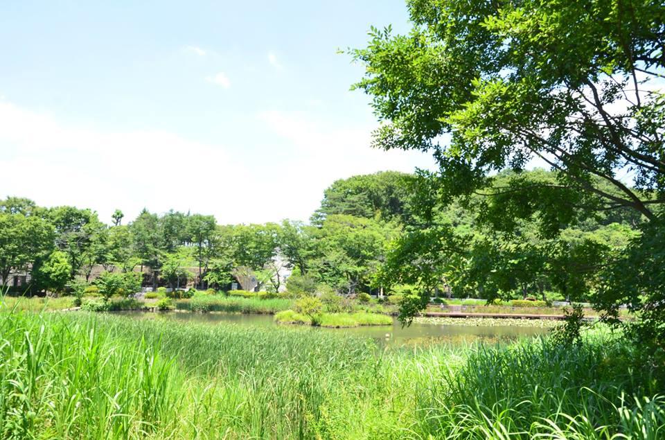 もえぎ野公園1